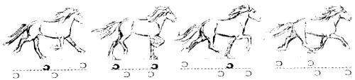 Pace diagram